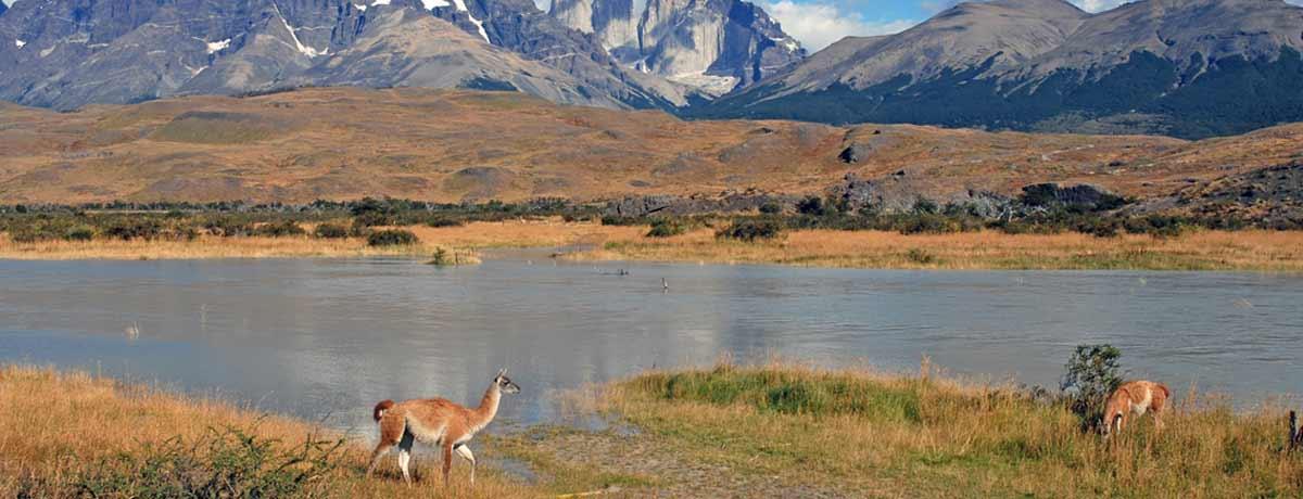 Patagonie een praqchtig gebied in Zuid Amerika