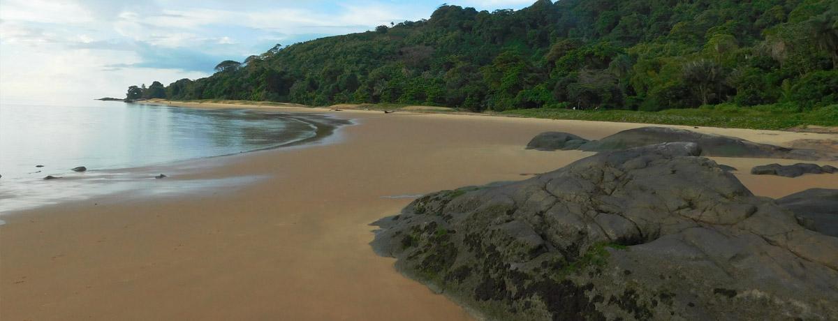 Gosselin Beach in Frans Guyana is een prachtig strand
