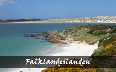 Backpacken Zuid-Amerika - Falklandeilanden