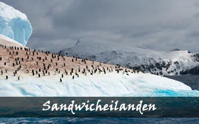 Backpacken Zuid-Amerika - Zuidelijke Sandwicheilanden