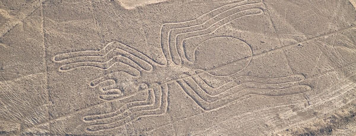 Nazca lijnen in de woestijn van Peru, de spin