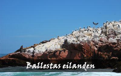 Backpacken Zuid-Amerika - Ballestas eilanden - Peru
